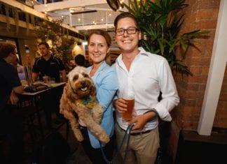 The Boundary Hotel Best Dog Friendly Bars Brisbane