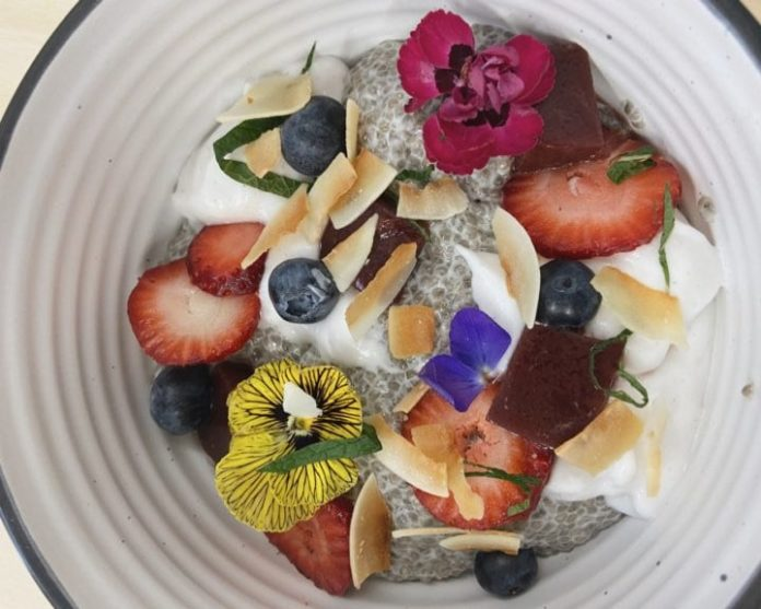 chia pudding plant vibes cafe